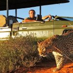 Tours and Safaris