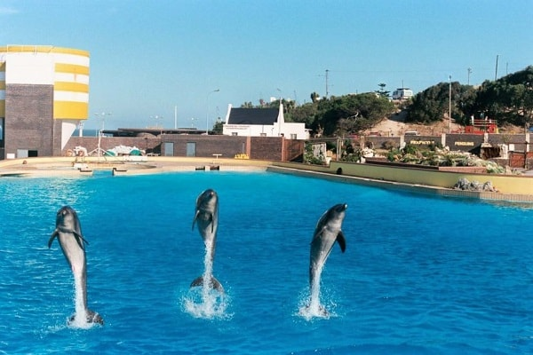 Zoos and Aquariums in Port Elizabeth